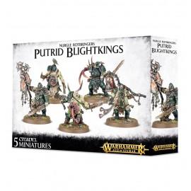 WARHAMMER age of sigmar Putrid Blightkings