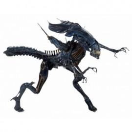 Aliens - Predator Wolf MonsterArt Figuart Bandai