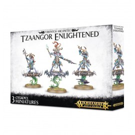 warhammer age of sigmar Tzaangor Enlightened Francais