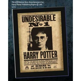 "Avis de recherche Plaque ""Undesirable N°1"" Harry Potter"